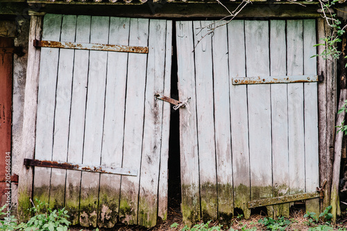 Old Wooden Garage Doors Covered With Moss Broken Closed On Hinges