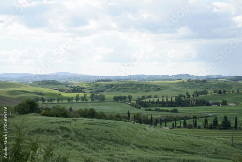Spoed Foto op Canvas Khaki Crete Senesi near Asciano, Siena, Tuscan Italy, Magnificent landscape of the Tuscan countryside