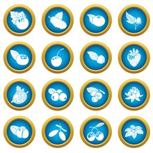 Berries Icons Set. Simple Illu...