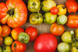 Set of different red and green tomatoes