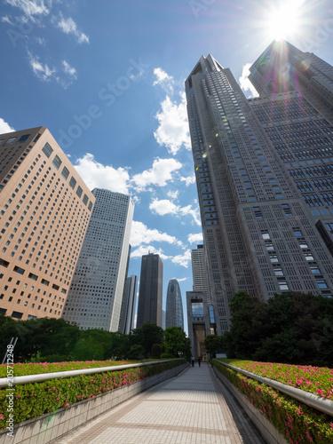 Fotografía  Skyscraper group in Shinjuku, Tokyo