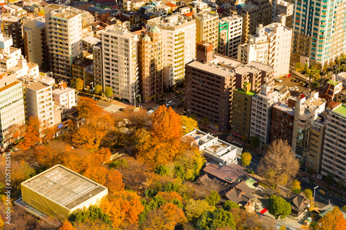 Deurstickers Stad gebouw Pubic park in the city aerial view, Tokyo Japan cityscape background