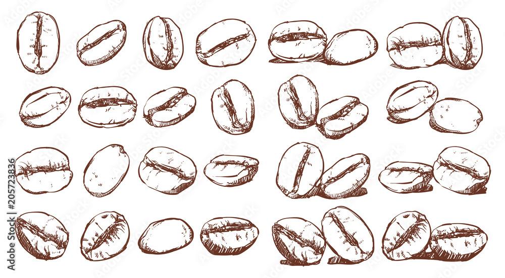 Ziarna kawy, szkic, zestaw do rysowania wektorowego, składnik, projekt Doodle