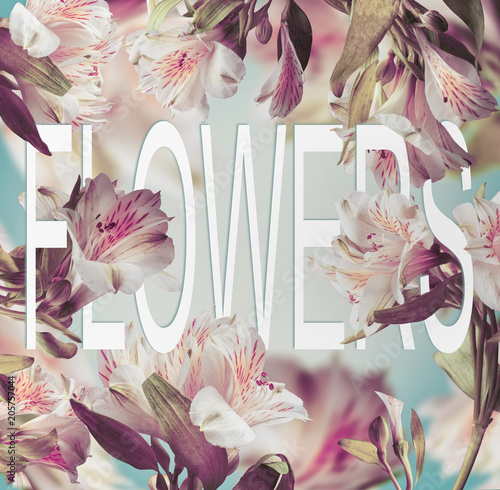 Poster Fleur Word Flowers made of paper on floral background with various flying flowers. Creative layout with text
