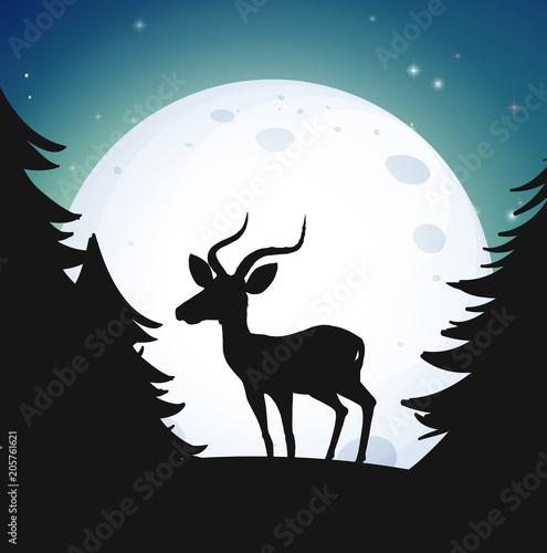 Papiers peints Jeunes enfants Silhouette Forest and Deer at night
