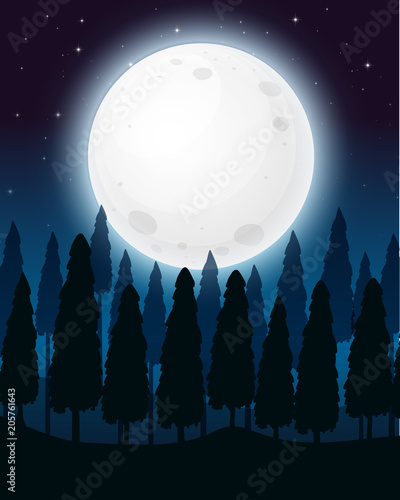 Papiers peints Jeunes enfants A Forest at the Full Moon Night