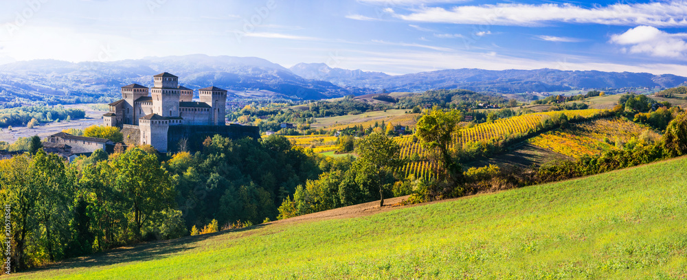 Fototapety, obrazy: Medieval castles and wineyards of Italy - Castello di Torrechara (Parma)