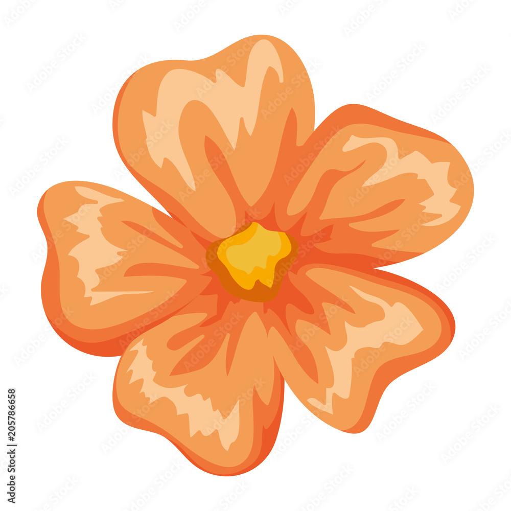 Fototapeta beautiful flower decorative icon vector illustration design