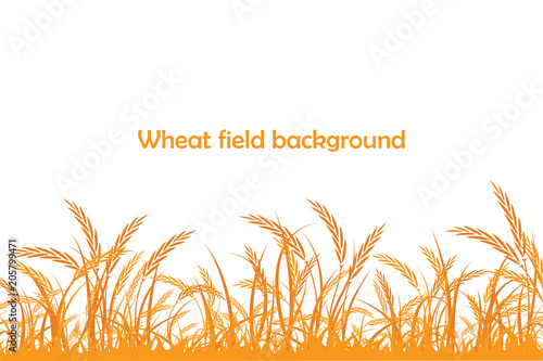 Leinwand Poster Vector silhouette of wheat. Wheat in the field