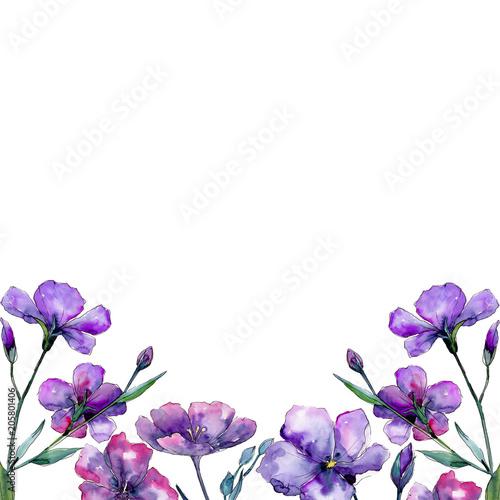 Violet flax Fototapeta