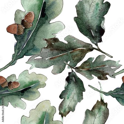 liscie-debu-kwiatowy-ogrod-botaniczny-lisci-roslin