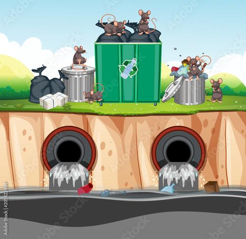 Papiers peints Jeunes enfants Unsanitary Waste Disposal with Rat