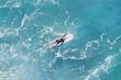 Surfer in the ocean, top view