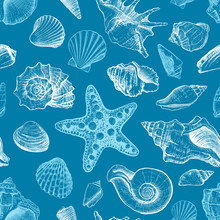 Seamless Pattern With Seashells Different Shapes And Starfish On A Dark Blue Background. Hand Drawn Sketch. Vector Illustration