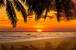 Beautiful sunset over the sea with coconut tree at summer time