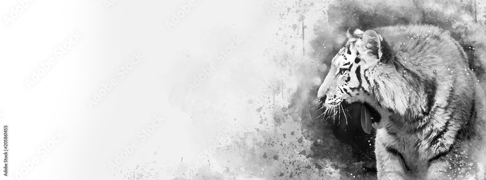 Siberian tiger black and white mixed media banner in popular social media proportions