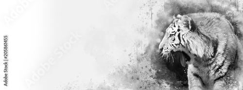 Cuadros en Lienzo Siberian tiger black and white mixed media banner in popular social media propor