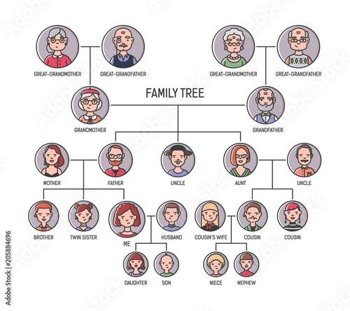 Fotografie, Obraz  Family tree, pedigree or ancestry chart template