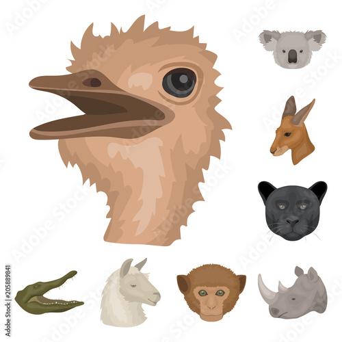Printed kitchen splashbacks Illustrations Wild animal cartoon icons in set collection for design. Mammal and bird vector symbol stock web illustration.