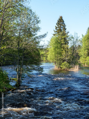 Foto op Plexiglas Rivier Swedish river and natural salmon area in spring. Farnebofjarden national park in Sweden.