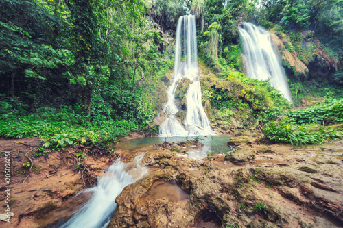 rainforest jungle Waterfall Canvas Print