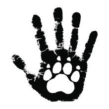 Take Care Of Animals. Animal P...