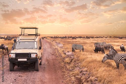 Photo  Game drive safari in Serengeti national park,Tanzania