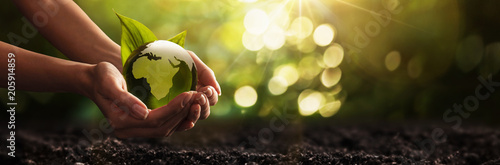 Canvas Prints Akt Green Planet in Your Hands. Save Earth. Environment Concept