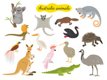 Set Of Australia Animals On Wh...