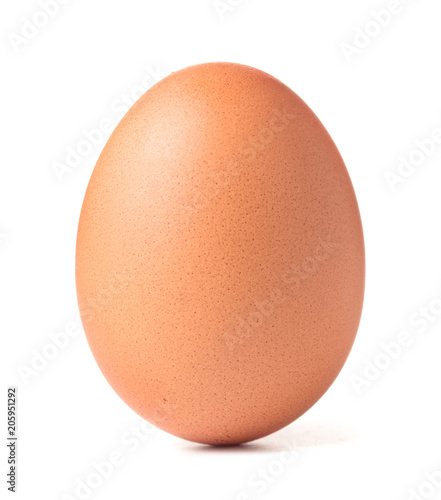Fotografia single chicken egg isolated on white background