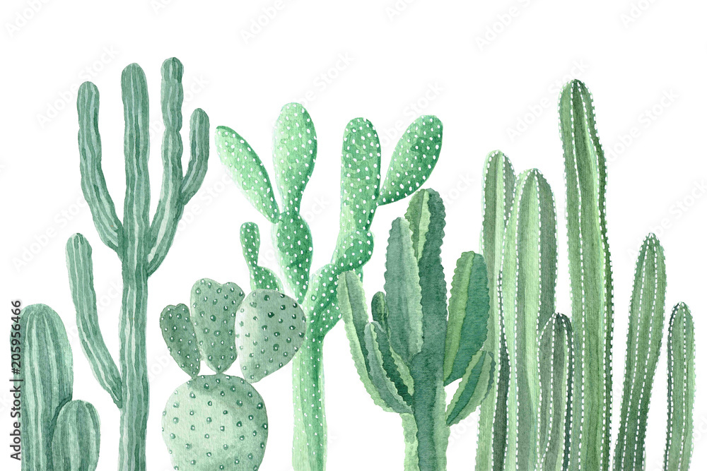 Fototapety, obrazy: Watercolor Cactus and Succulents