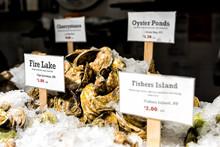 Closeup Of Market Food Lobster...