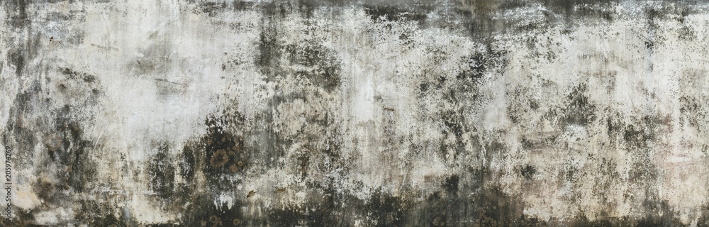 Fototapeta Cement wall background. Texture placed over an object to create a grunge effect for your design.