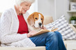 Side view portrait of smiling senior woman sitting on couch with her dog and reading book while enjoying weekend at home, copy space