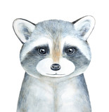 Raccoon character portrait. Hand drawn watercolor graphic painting on white background, isolated, looking at camera, closeup. Symbol of exploring, courage, intelligence, secrecy, disguise, adaptation. - 205987815