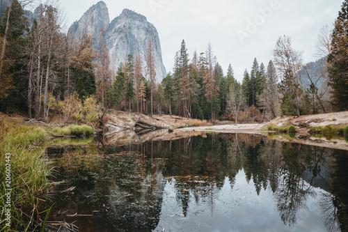 Fall in Yosemite  #206002443