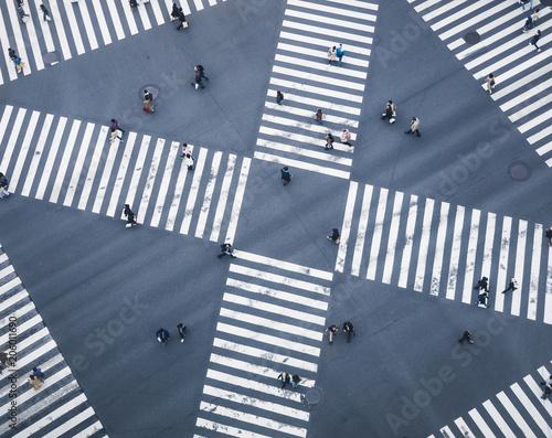 People walking on Crossing city street  crosswalk top view Canvas Print