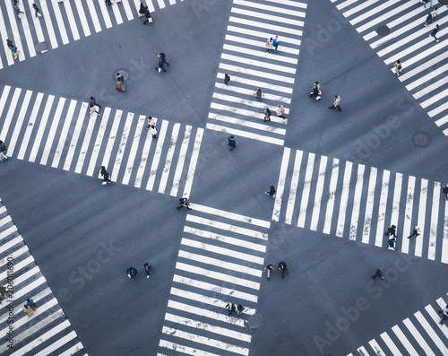 Cuadros en Lienzo People walking on Crossing city street  crosswalk top view