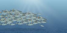 Vector Illustration Of The Sea...