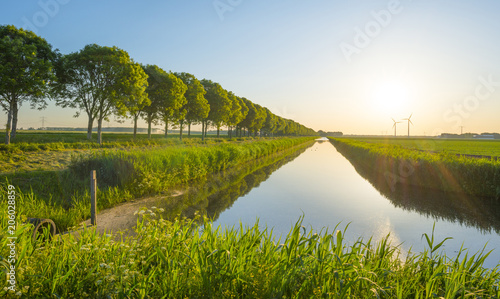 Staande foto Kanaal Canal in the countryside in the light of sunrise in spring