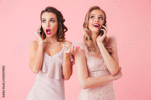Two young elegant women in dresses posing together Poster