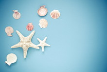 Summer Holidays. Starfish, Seashells On A Light Blue Background. Sea Souvenirs. Summer Concept. Flat Lay, Top View, Copy Space