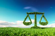 Eco Friendly Law, Politics And...