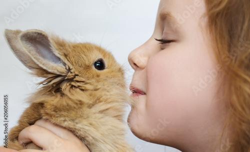little girl baby kisses rabbit