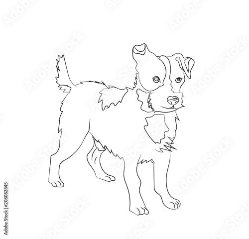 Foto op Aluminium Doe het zelf dog stands, lines, vector