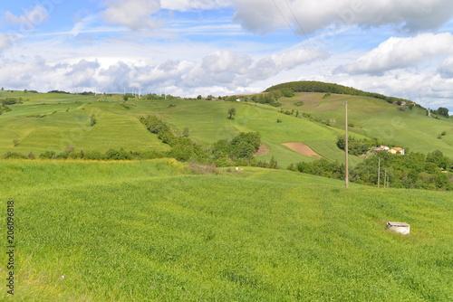 Foto op Canvas Pistache Food,Flowers,Hen,farm,agricolture,grass,farmaland,eggs,animals,panorama,wood,
