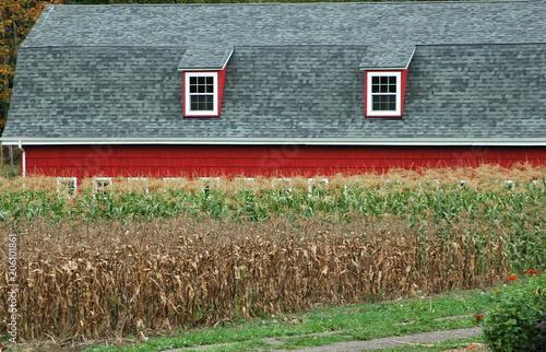Fotografie, Obraz  Farmland storage house displayed in an open field outdoors.