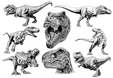 Graphical Set Of Tyrranosauruses Isolated On White,vector Illustration For Tattoo Anf Printing