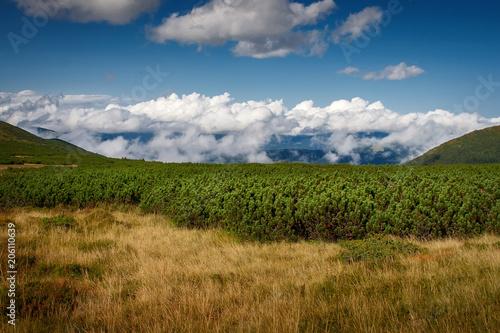 Fotobehang Blauwe jeans Beautiful mountains and blue sky in the Carpathians. Ukraine.