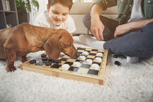 Low Angle Of Cheerful Family Playing Checkers While Sitting On Floor. Cute Dog Is Smelling White Figurine With Curiosity